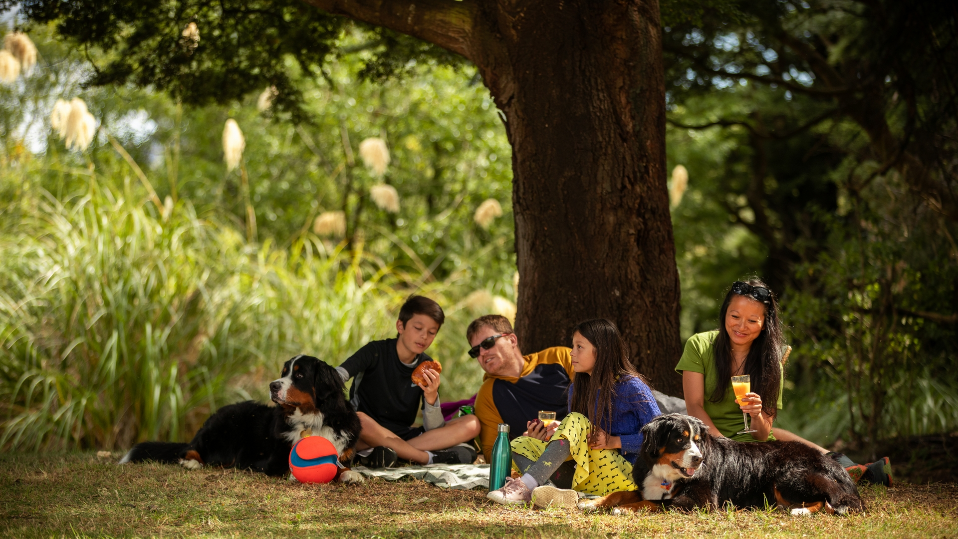Family and dogs having a picnic in ohakune - visit ruapehu.jpg